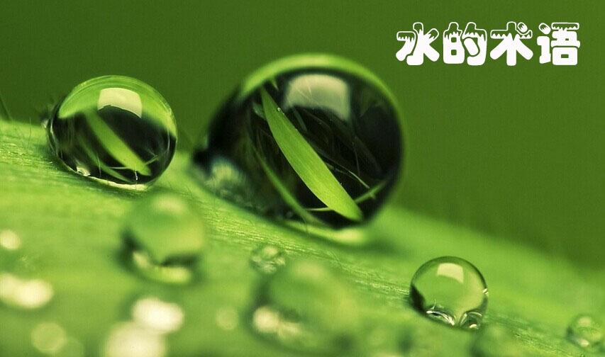 绿色管体矢量图